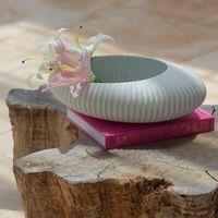 centro de mesa shell