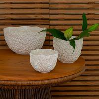 bowl de porcelana nicole
